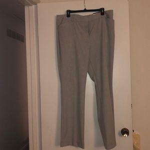 Brand New Dress Pants
